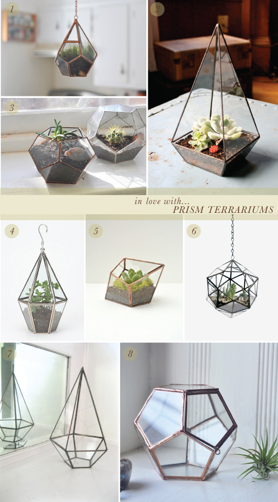 in love with... prism terrariums