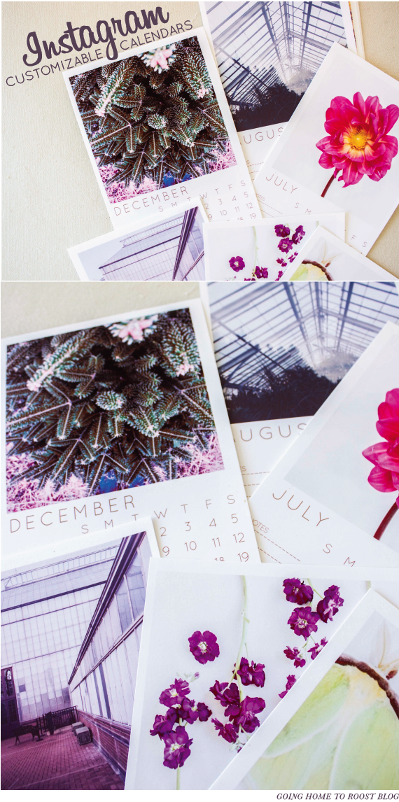 2015 printable instagram calendars (2)
